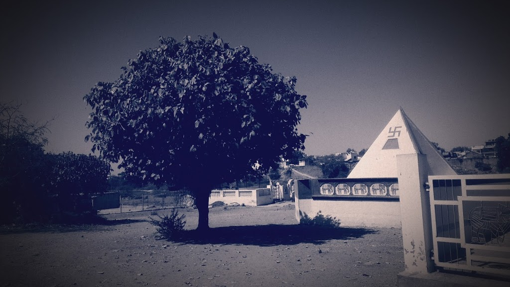 The Alone Tree